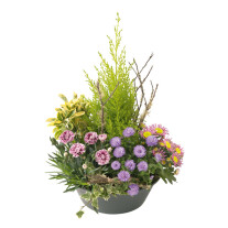 arrangement of green and blooming plants